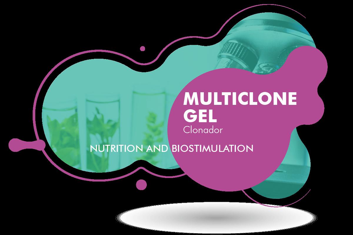 Multiclone Gel