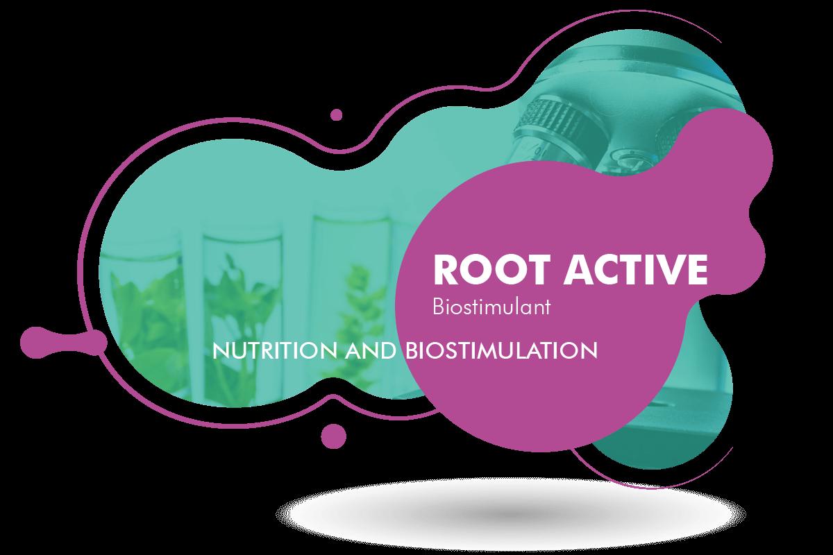 Root Active